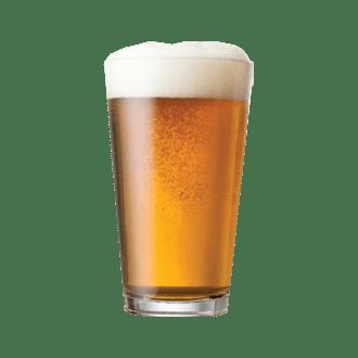 Drink – Beer Image